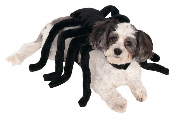 SPIDER HARNESS PET COSTUME  - SIZE L