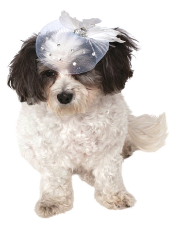 FANCY FORMAL HAT PET - SIZE M-L