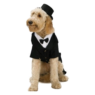 TOP HAT PET - SIZE S-M