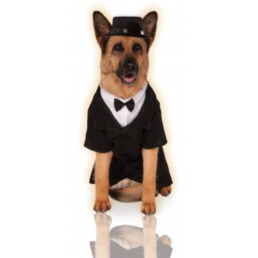 DAPPER DOG COSTUME, BIG SIZES - VARIOUS