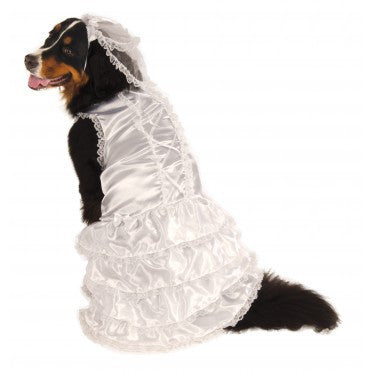 BIG DOG BRIDE COSTUME, PET, VARIOUS SIZES