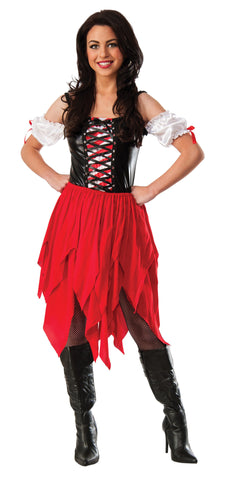 Pirate Lady Womens Adult Costume