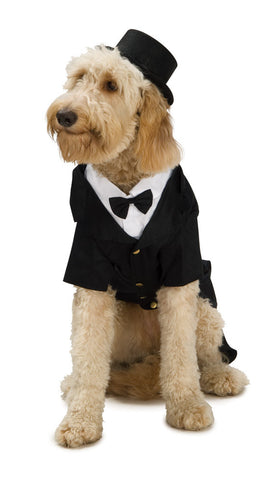 DAPPER DOG PET COSTUME - SIZE M