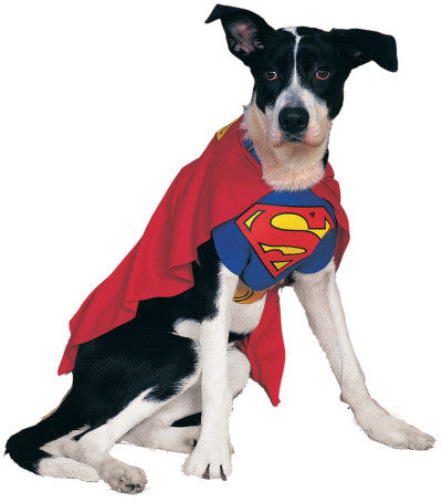 SUPERMAN CLASSIC PET COSTUME - SIZE M