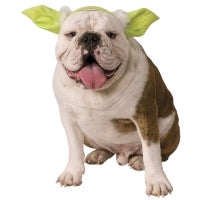 YODA PET COSTUME HEADBAND - SIZE S-M