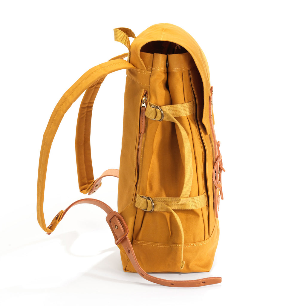 Fuji Backpack