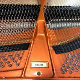 Wilhelm W180 Grand Piano Serial Number