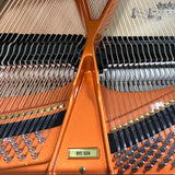 Wilhelm W206 Grand Piano Serial Number