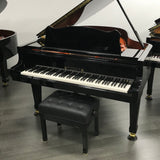 Wilhelm W206 Grand Piano Front with Artist Bench
