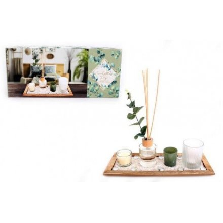 Blooming Essentials Ltd Artificial Eucalyptus Diffuser & Candle Tray Set