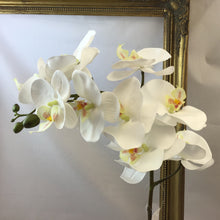 Load image into Gallery viewer, Blooming Essentials Ltd Artificial Orchid Stem