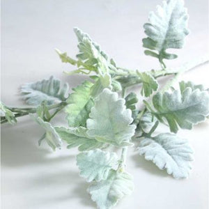 Blooming Essentials Ltd Artificial Dusty Miller Leaf Spray