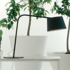 Excentrica Studio Table Light