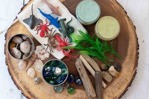 Natural Playdough Kit - Ocean Life - SimplytoPlay