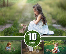 Load image into Gallery viewer, 10 different grey rabbit bunny animals Photo Overlays, Photoshop overlay, chicken, Easter, spring, summer portrait, kids, family photography