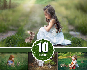10 different grey rabbit bunny animals Photo Overlays, Photoshop overlay, chicken, Easter, spring, summer portrait, kids, family photography