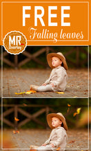 Load image into Gallery viewer, FREE falling leaves Photo Overlays, Photoshop overlay