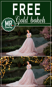 FREE gold bokeh light Photo Overlays, Photoshop overlay