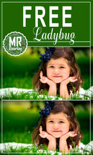 Load image into Gallery viewer, Free ladybug Photo Overlays, Photoshop overlay