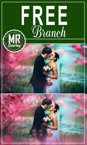 FREE branch tree Photo Overlays, Photoshop overlay