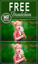 Load image into Gallery viewer, FREE dandelion flower Photo Overlays, Photoshop overlay