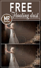 Load image into Gallery viewer, FREE floating dust effect Photo Overlays, Photoshop overlay