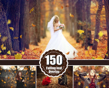 Load image into Gallery viewer, 150 falling leaves Photo Overlays, Photoshop Overlays, Autumn Overlays, Falling Leaves Photo Effect, realistic Autumn, png file