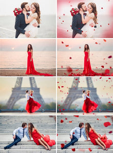 110 Flower petals Photo Overlays, Photoshop Overlay, wedding, Valentine's Day, romantic, summer, digital backdrop background, rose, png file