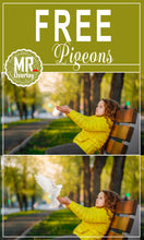 Load image into Gallery viewer, FREE pigeon bird photo Overlays, Photoshop overlay