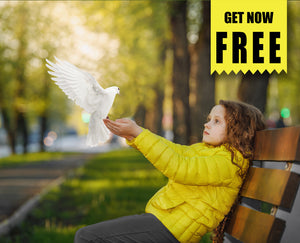 FREE pigeon bird photo Overlays, Photoshop overlay