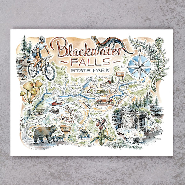 Blackwater Falls Map
