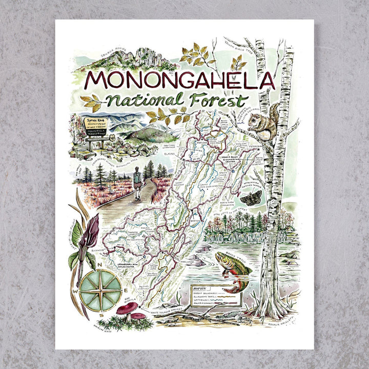 Monongahela National Forest Map