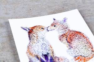 Red Foxes Kissing