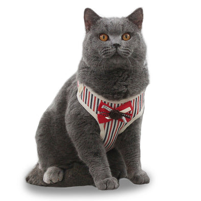 Cat Bow-knot Harness with Leash