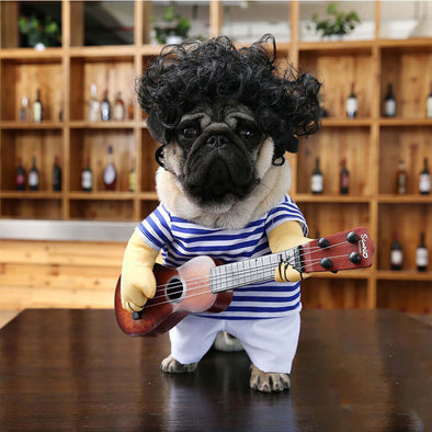 Guitar Dress Up Pet Costume