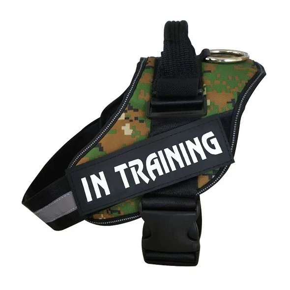 Camouflage Custom Patches ALL-IN-ONE NO PULL DOG HARNESS