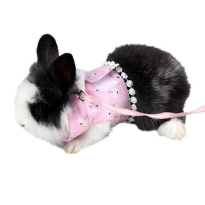 Small Pet Harness and Leash