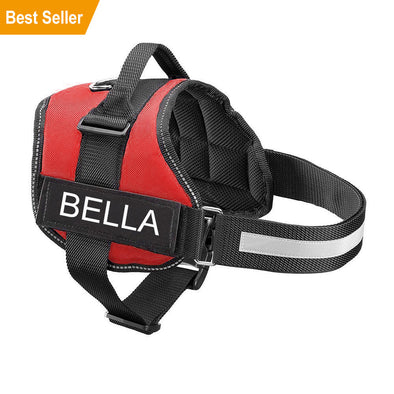 ALL-IN-ONE NO PULL DOG HARNESS With Name