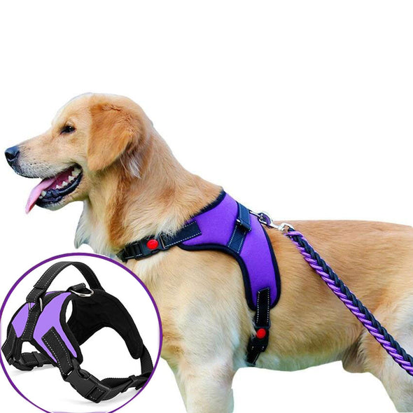 Summer No Pull Dog Harness