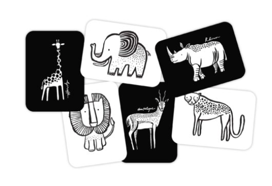 Art Cards- Safari Collection - WORLD OF MONOKROME