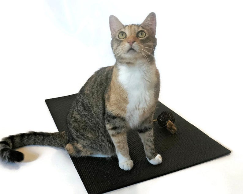 Feline Yogi Yoga Cat Mat -Black
