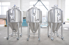 Load image into Gallery viewer, 100L Conical Fermenter