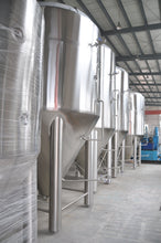 Load image into Gallery viewer, 60bbl Conical Fermenter