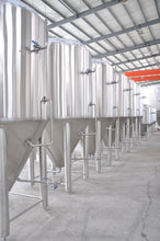Load image into Gallery viewer, 20bbl Conical Fermenter