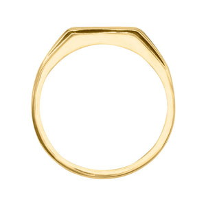 Gents Channel Set Diamond Ring in 10K Yellow Gold (0.25ct tw)