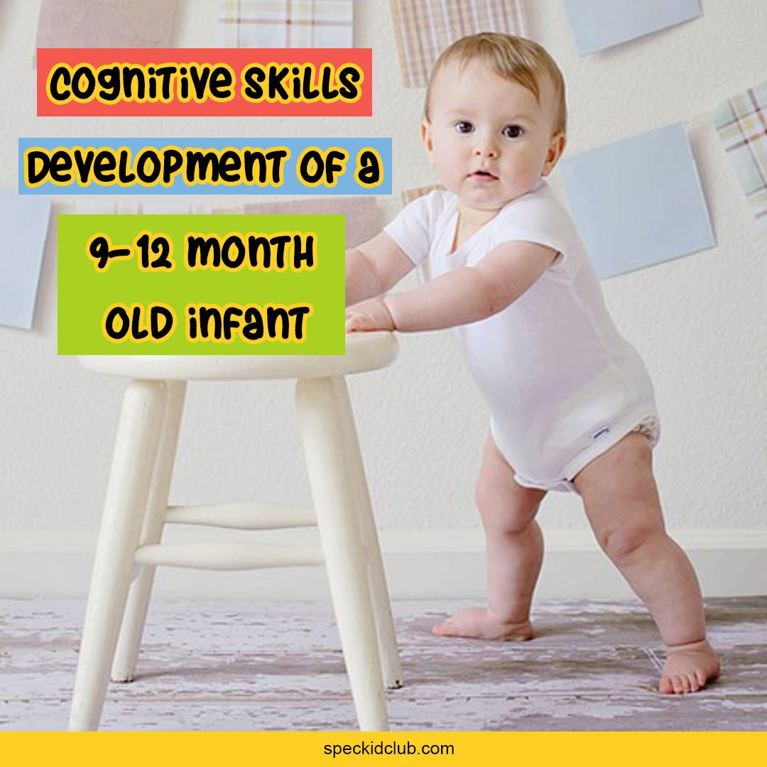 Baby Cognitive Development | 9-12 Months