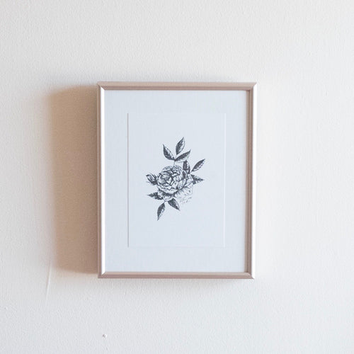 Illustrated Rose Print