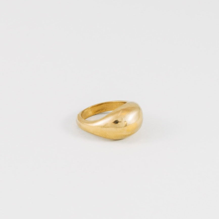 Magnes Gold Ring | Wolf Circus Gold Magnes Ring | Gold Dome Ring | Golden Rule Gallery | Excelsior, MN