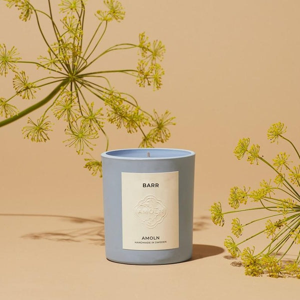 Amoln Barr Candle With Botanicals