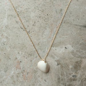 Collected Shell and Gold Necklace